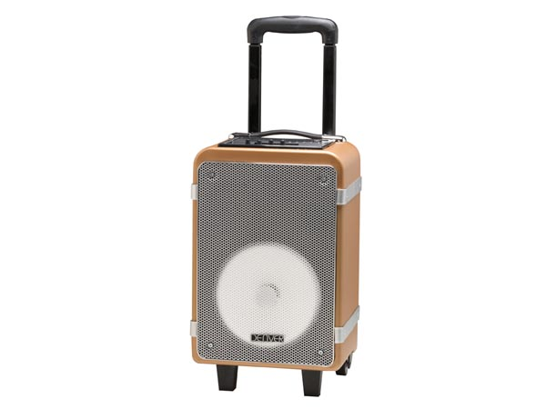 TSP-150 - Bluetooth trolley speaker with 15W output